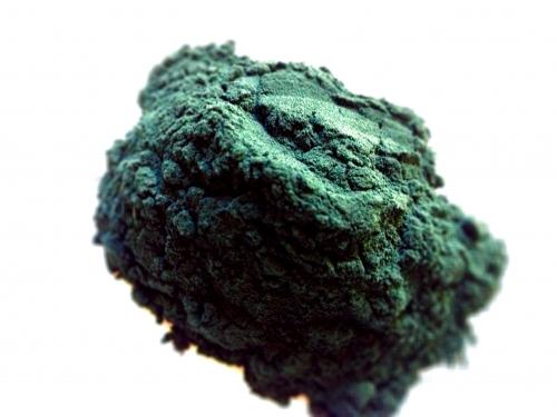 blue-green-algae.jpg